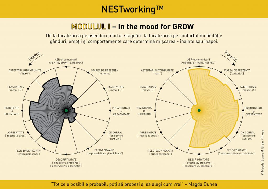 Nestworking I doua roti fara scala